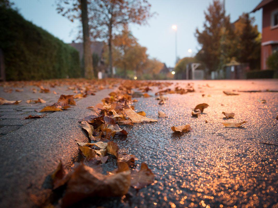 Herbst - Symbolfoto: Pascal Höfig
