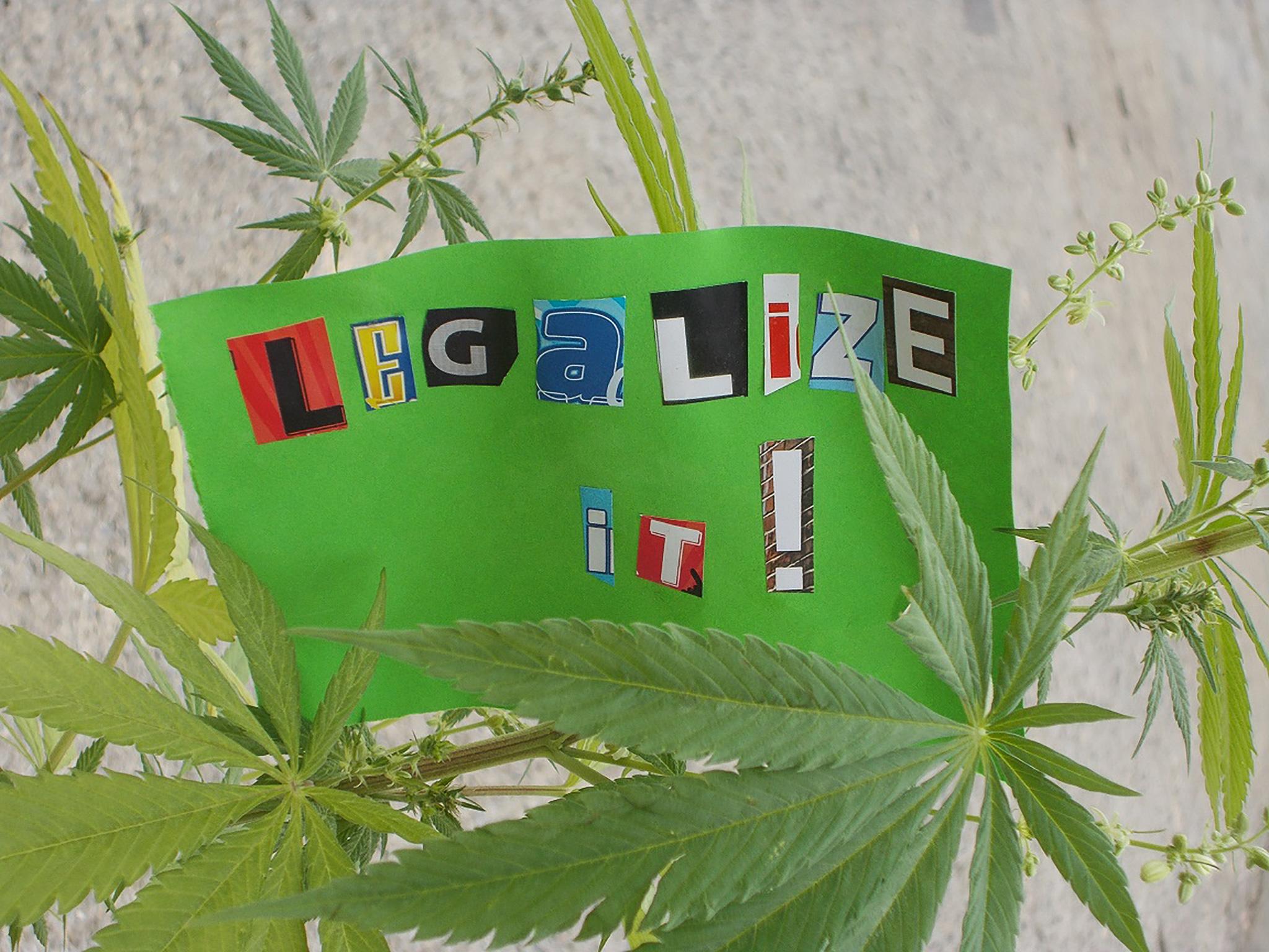 """Die Forderung: """"Legalize it!"""" Foto: Polizei"""