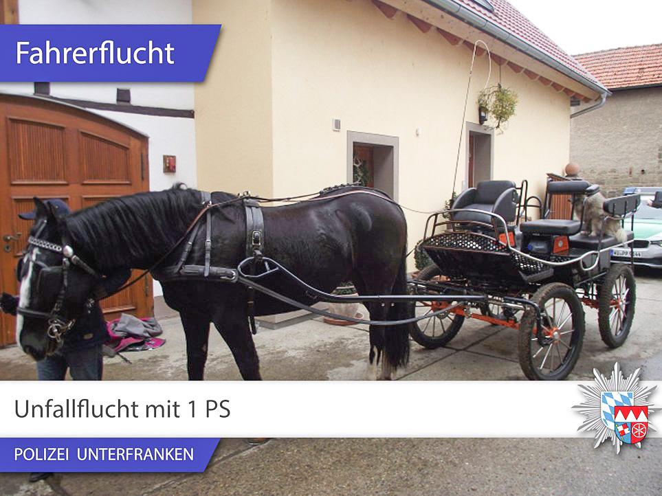 Durch Hufspuren und Pferdeäpfel verraten - Foto: Polizei Unterfranken