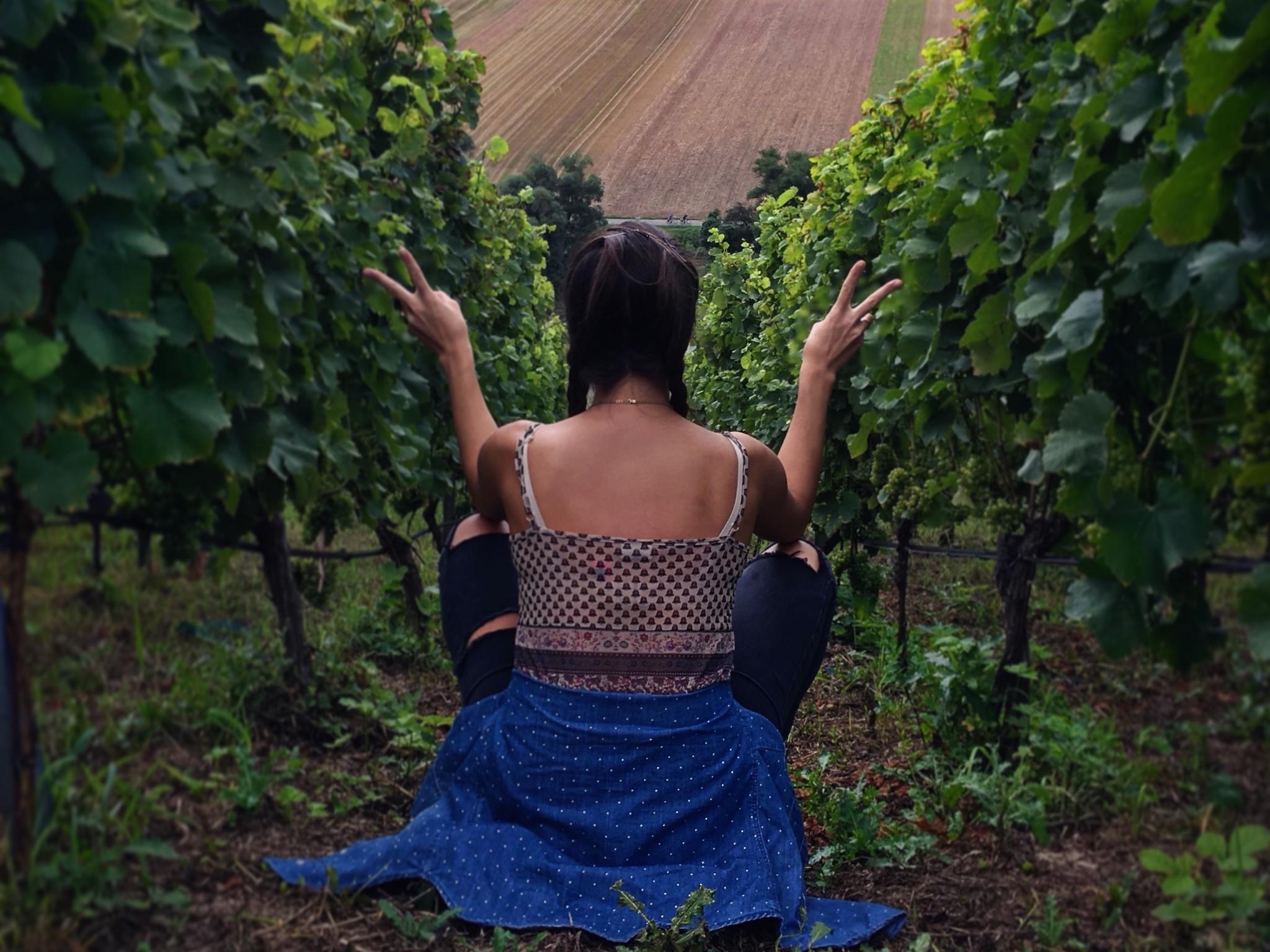 """""""The Wine Girl"""" zwischen den Reben. Foto: Conrad Kreilein"""