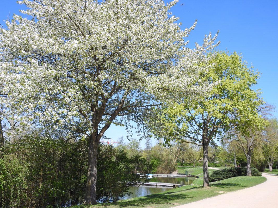 Der Baggersee im Frühling. Foto: Dirk Flieger