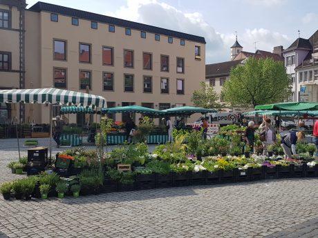 Wochenmarkt auf dem Marktplatz. Foto: Dirk Flieger