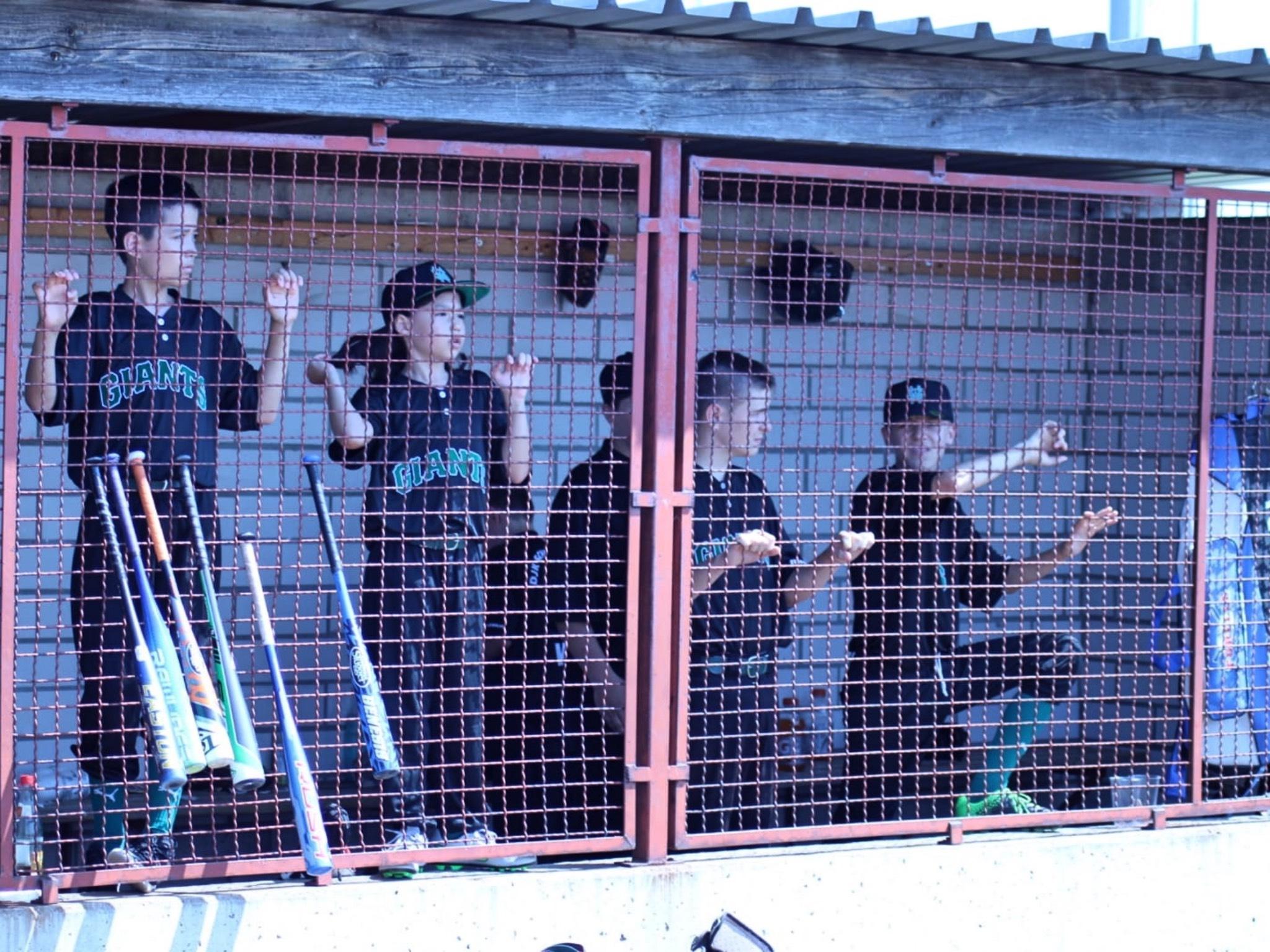 DJK Baseball Giants beim Training Foto: DJK Schweinfurt