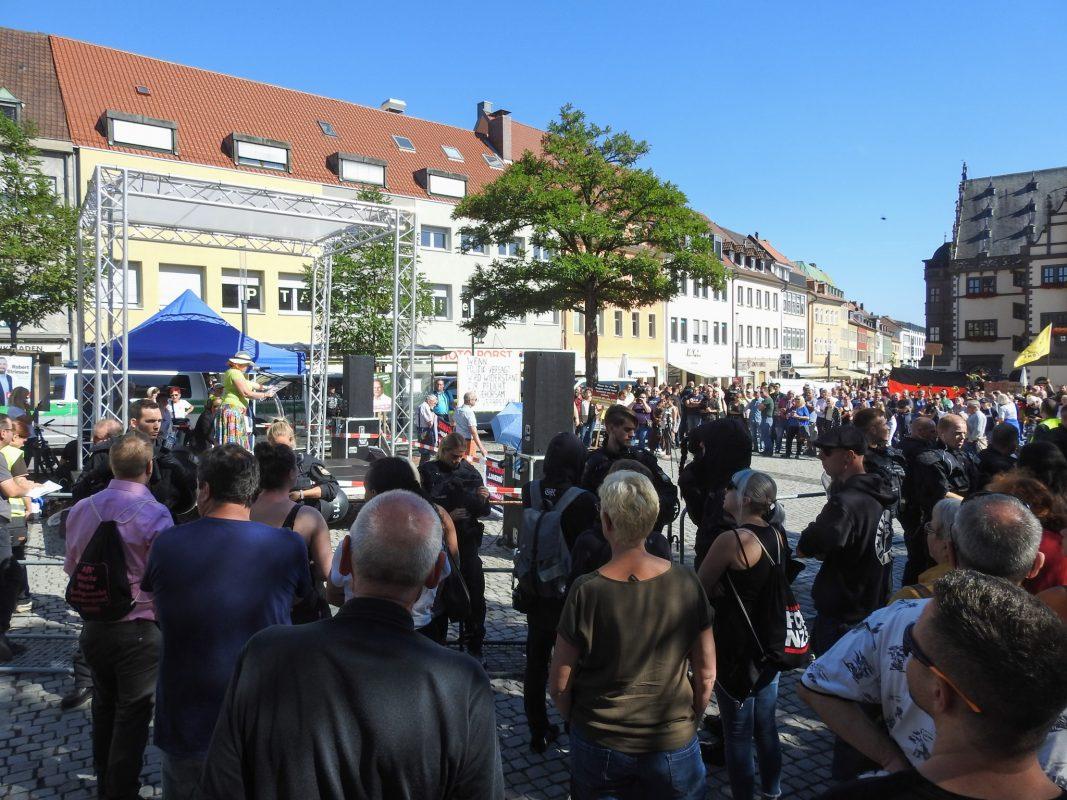 AfD-Kundgebung in Schweinfurt. Foto: Dirk Flieger