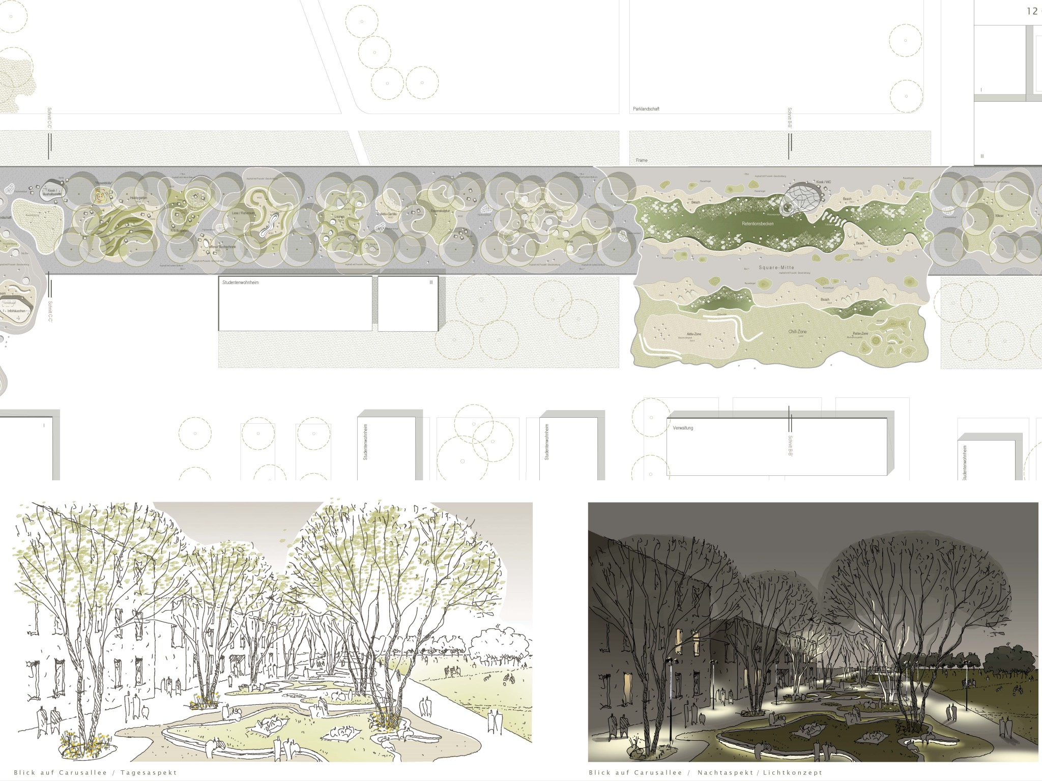So soll die Carus-Allee einmal aussehen. Visualisierung: lohrer hochrein landschaftsarchitekten und stadtplaner gmbh (München)