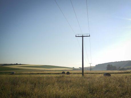 Landwirtschaft. Symbolbild: Dominik Ziegler