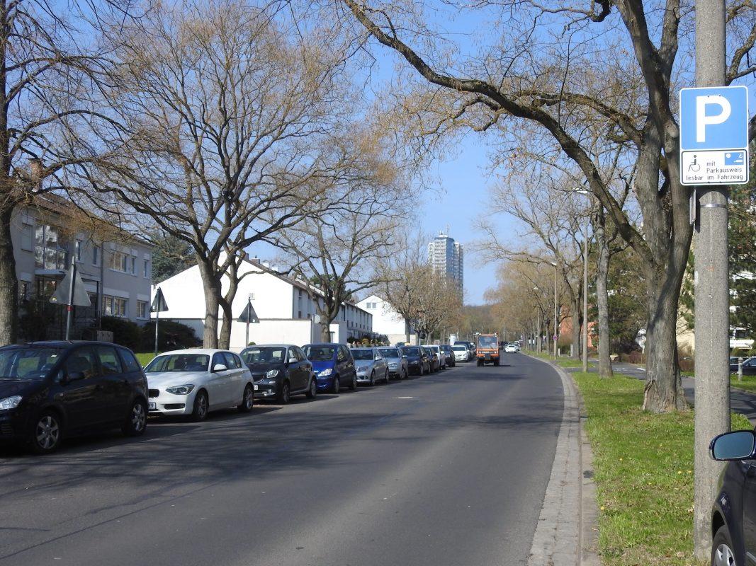 Die Elsa-Brändström-Straße am Hochfeld. Foto: Dirk Flieger