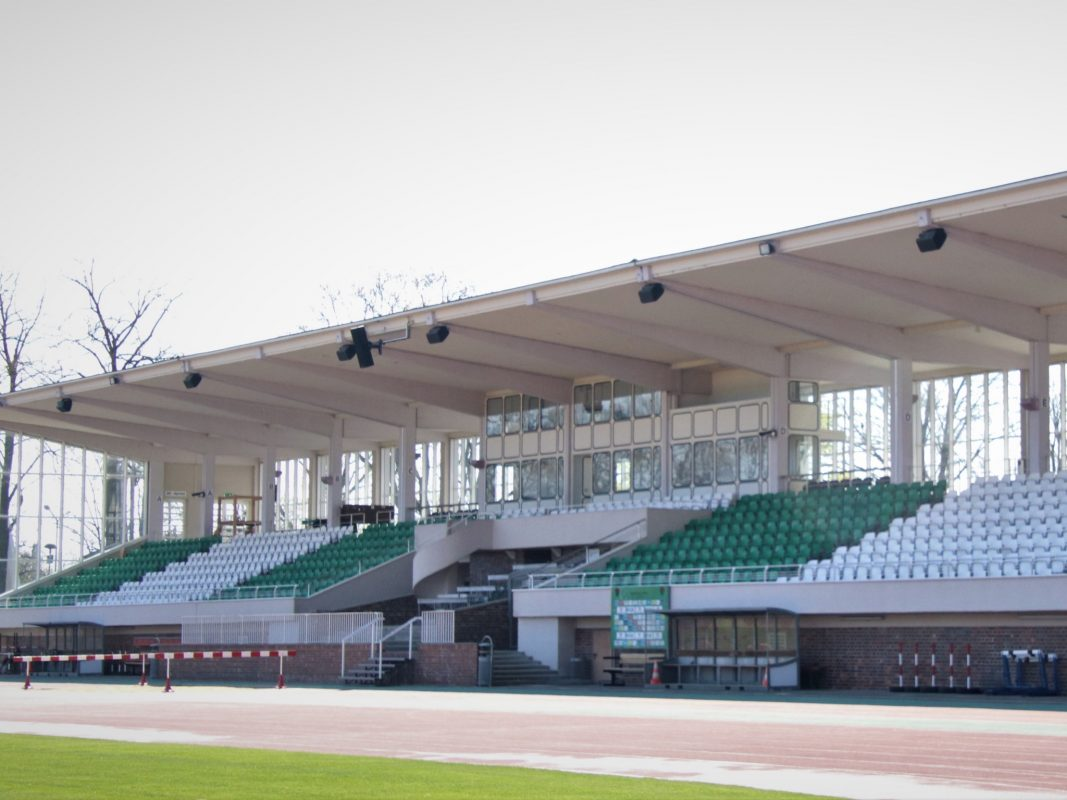 Die Tribüne im Willy-Sachs-Stadion ist jetzt Grün-Weiß. Foto: 1.FC Schweinfurt 1905