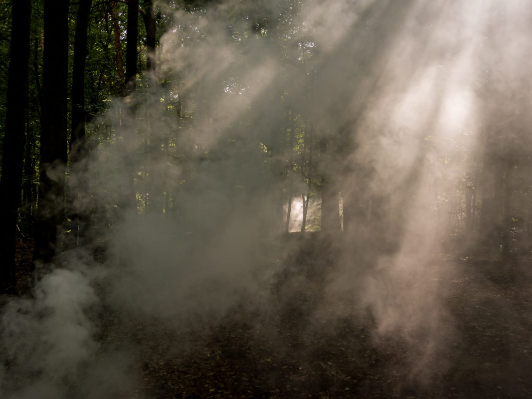 Waldbrand. Symbolfoto: Pascal Höfig