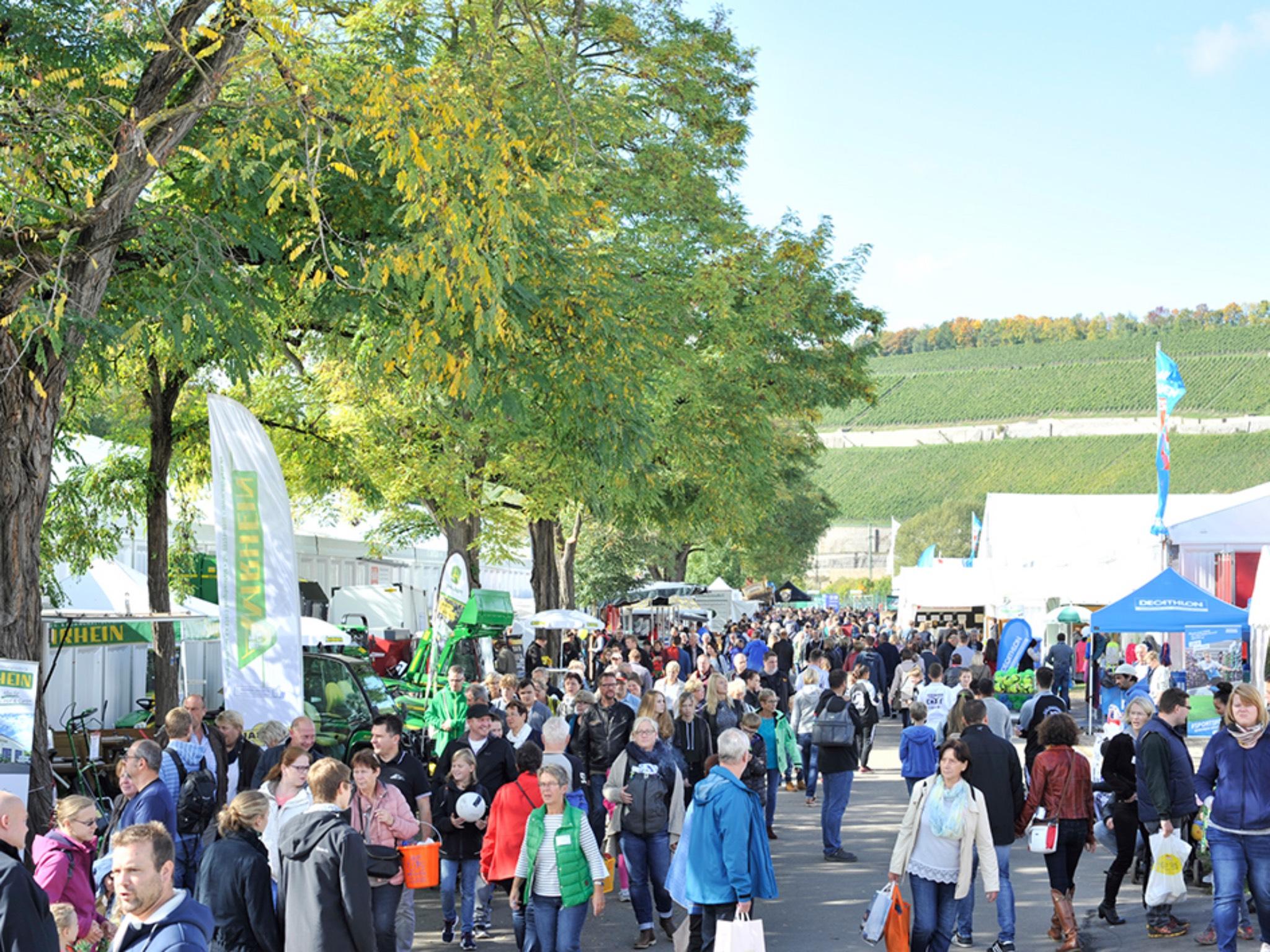 Mainfranken entdecken! Auf der Mainfranken-Messe in Würzburg. Foto: Mainfranken-Messe
