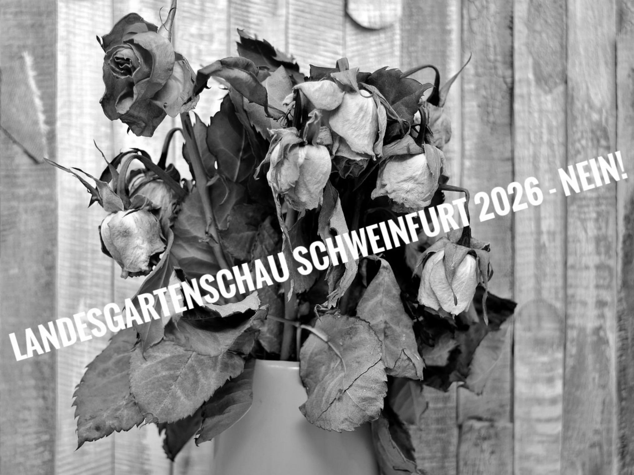 Zu hohes finanzielles Risiko zu Zeiten der Pandemie: Die Gegner einer Landesgartenschau 2026 in Schweinfurt formieren sich zu einer Bürgerinitiative gegen das städtische Großprojekt. Foto: BI