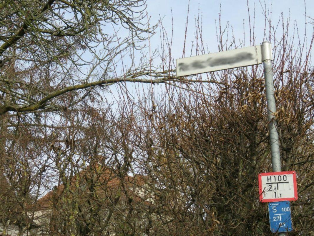 Symbolbild Hecken und Sträucher am Gehweg. Foto: Schweinfurt City