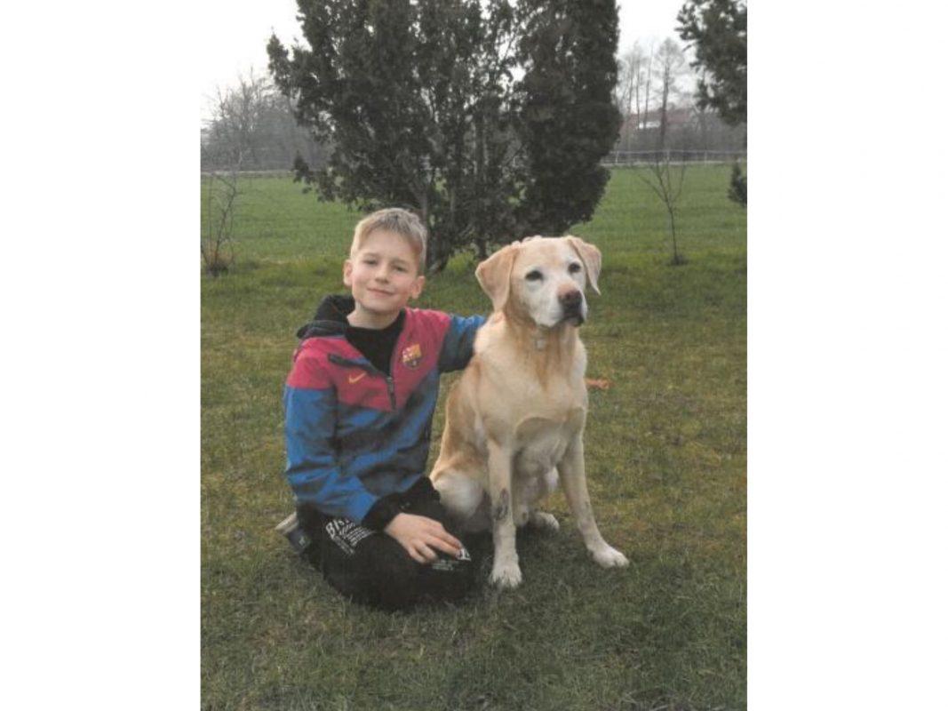 Der 11-jährige Dustin aus Osnabrück wird vermisst. Foto: Polizei